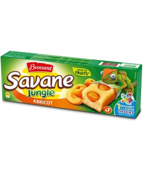 Gateau Savane jungle abricot