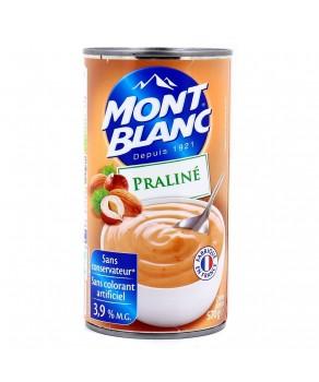 Crème praliné Mont Blanc