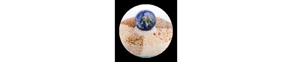 Épicerie du monde | vente en ligne